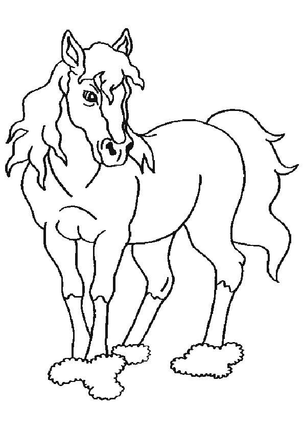 pferde 2 ausdrucken