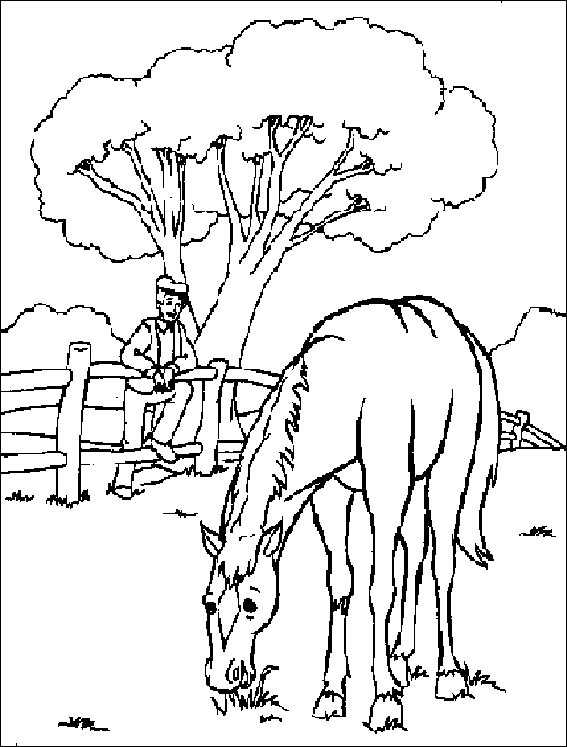 pferde 3 ausmalen