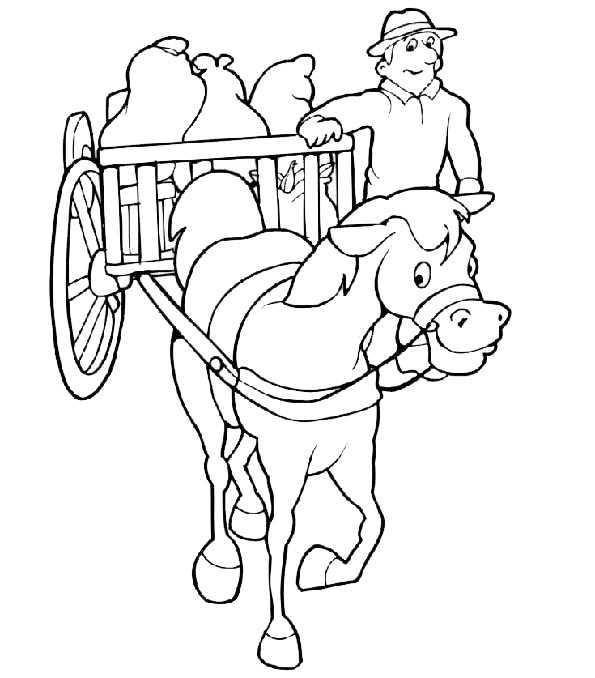 pferde 5 asumalen