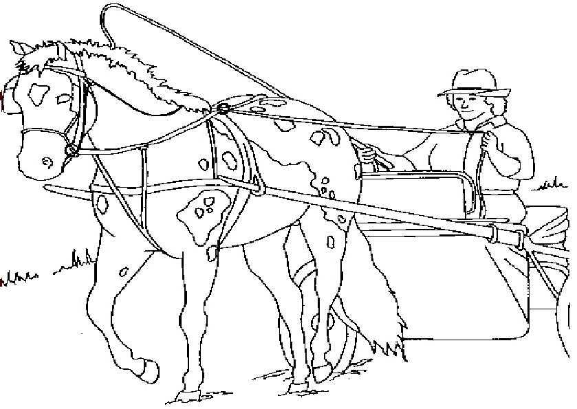 pferde mit kutsche ausmalen