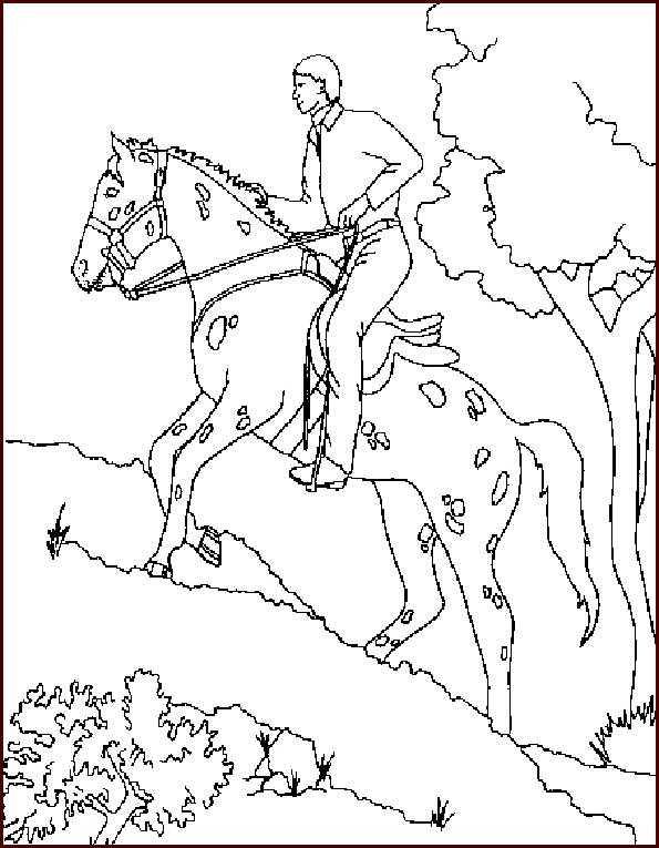 pferde und reiter ausmalen