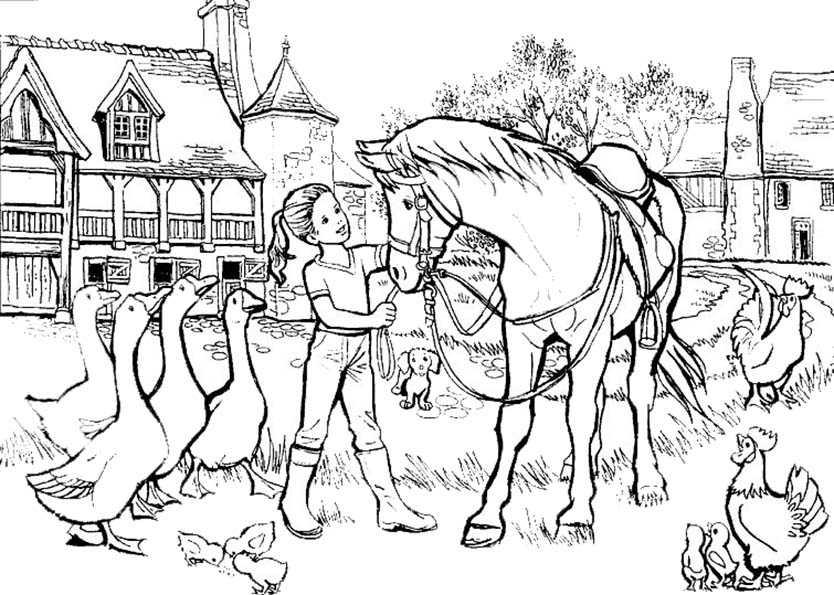 pferde und mher tiere