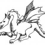 Drachen 9