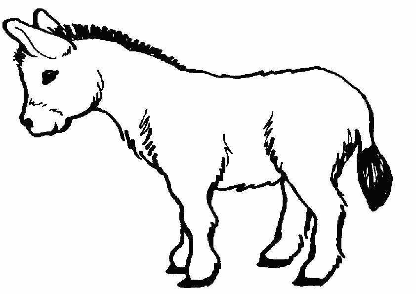 Esel malvorlagen