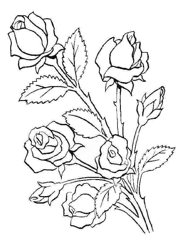 Ausmalbilder Blumen 6 Ausmalbilder Kostenlos