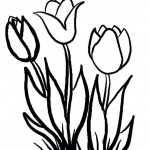 Blumen 9