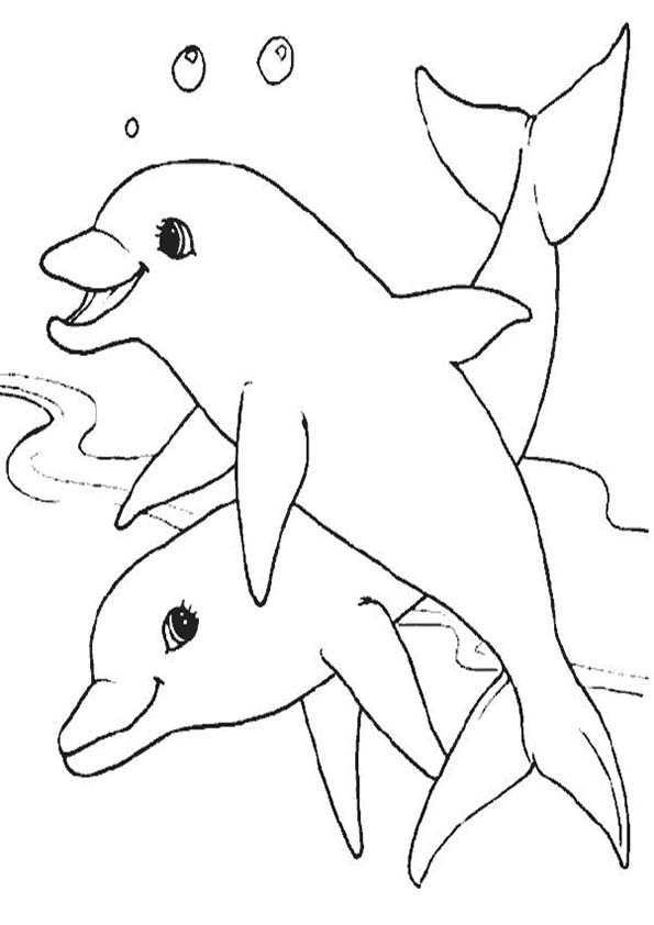delfinen malvorlagen