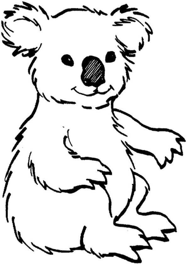 Koala malvorlagen