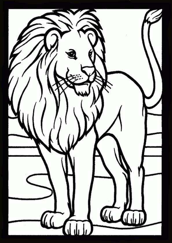leon malvorlagen