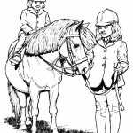 Pferde 17