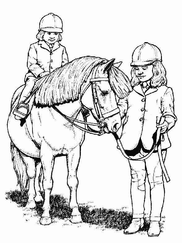 pferde mit reiter 17