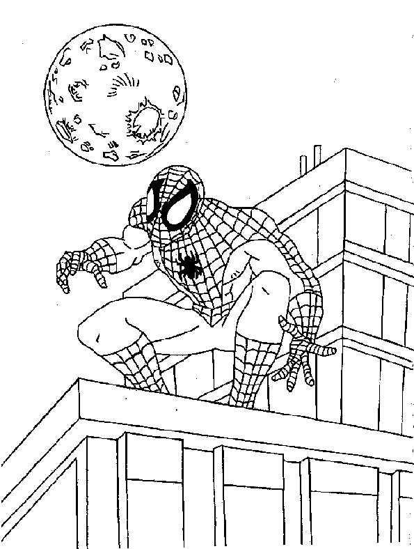 Spiderman sucht den Horizont