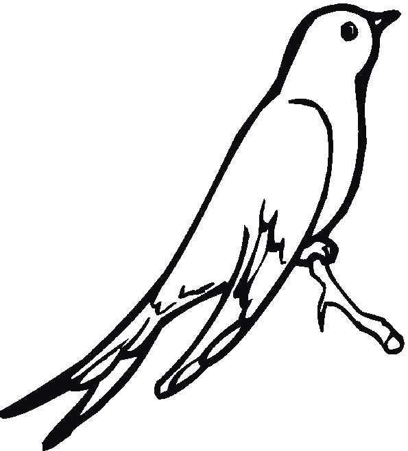 vogel malvorlagen
