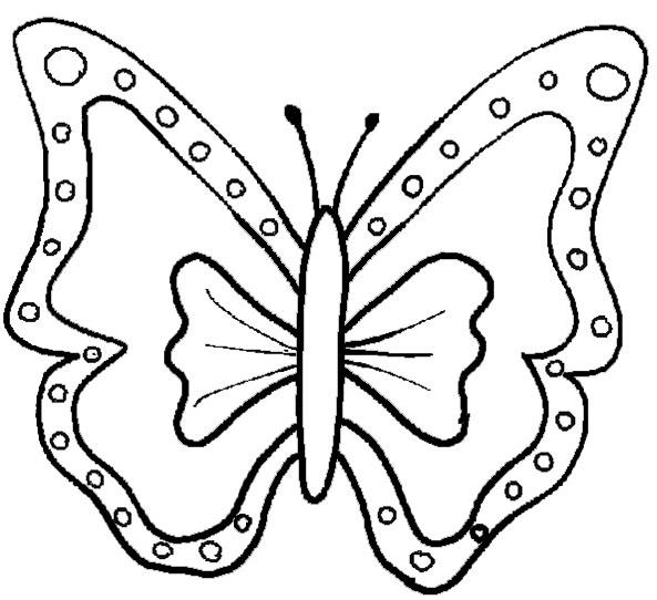 bilder 1 von Schmetterling