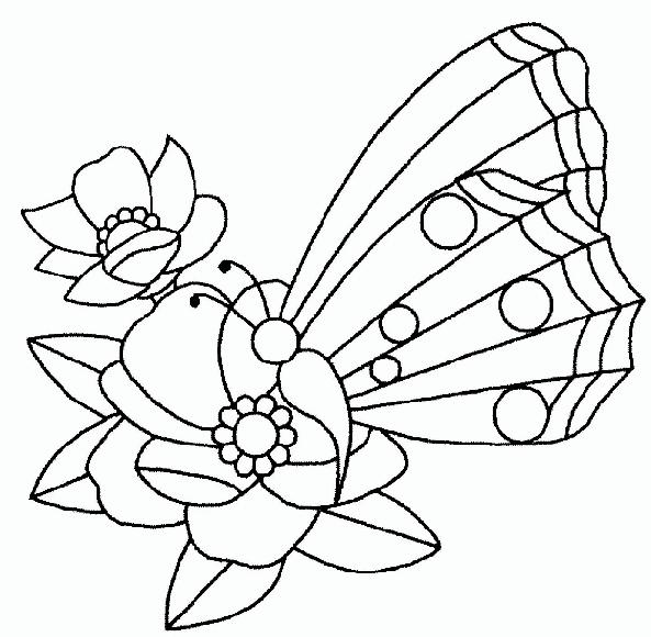 Schmetterling im blumen