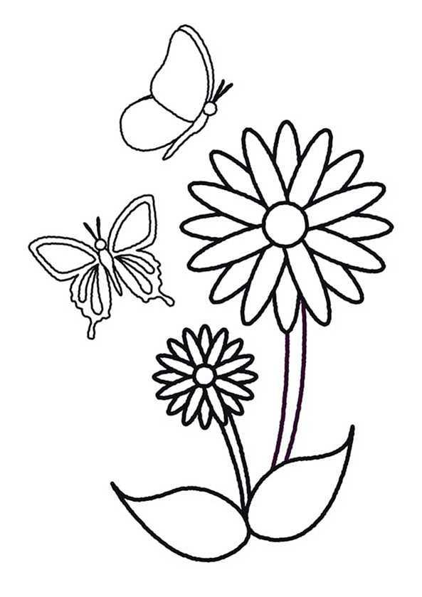 zwei Schmetterling und blumen