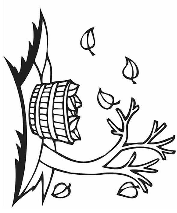 Warenkorb Blätter der Baum im Herbst zu sammeln