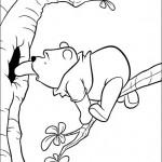 Winnie Pooh Baby 8