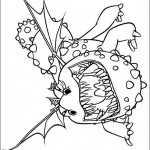 Drachenzähmen 13