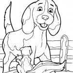 Hunde 5