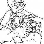 Katzen 7