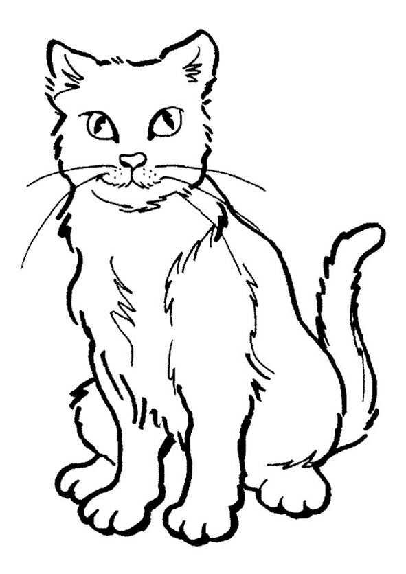 malvorlagen katzen 9