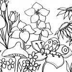 Frühling 7