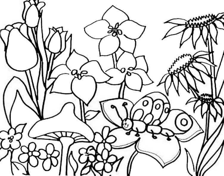 Gratis Malvorlagen Frühling Ausdrucken | My blog