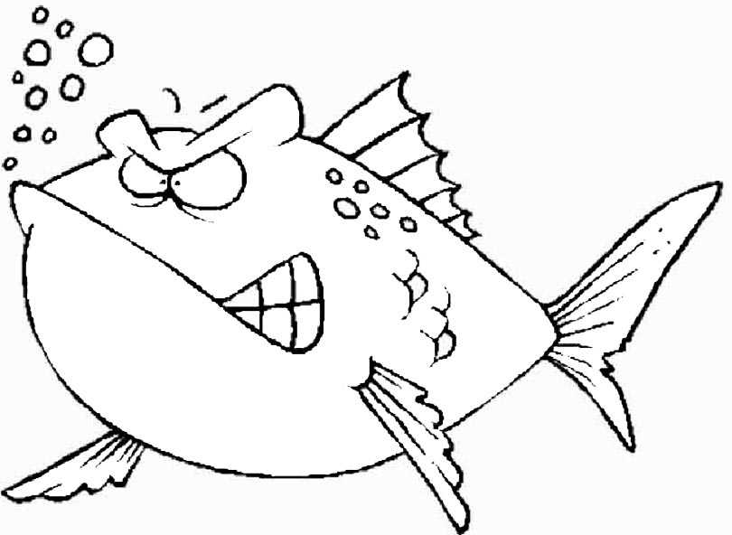 ausmalbilder kostenlos fische 2