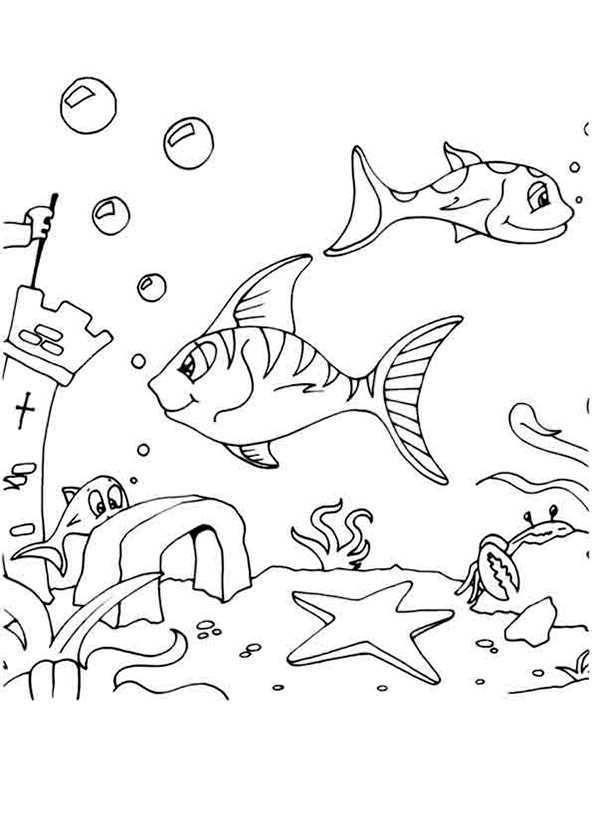 ausmalbilder fische 10