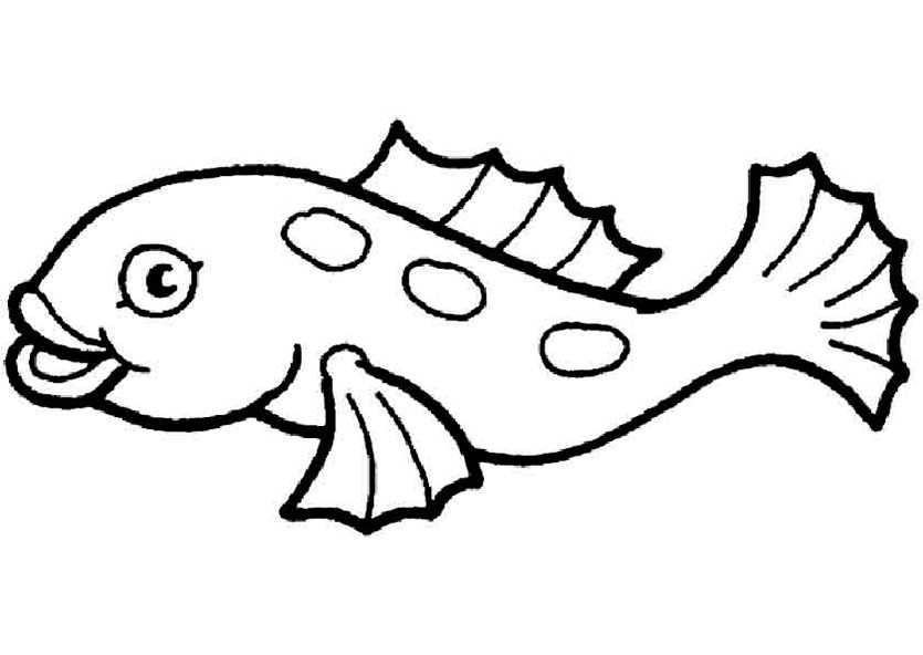 ausmalbilder fische 11