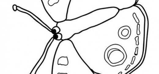 Schmetterling zum ausmalen bilder 5