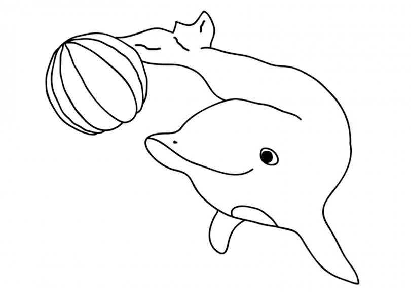 Ausmalbilder kostenlos Delfine 4 | Ausmalbilder Kostenlos