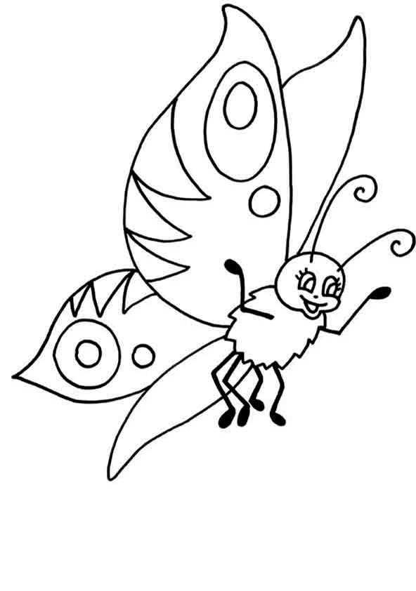 Schmetterling zum ausmalen bilder 8