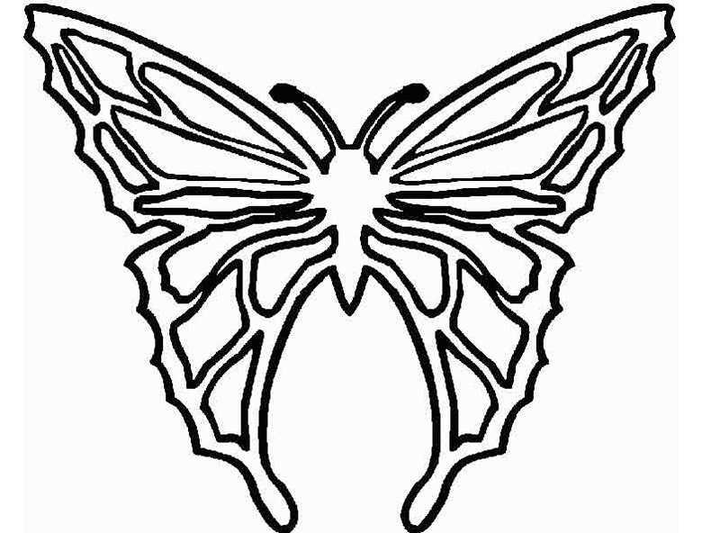 bilder 9 Schmetterling zum ausmalen