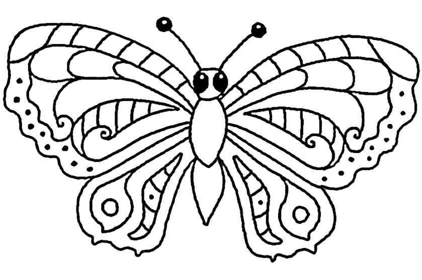 bilder 10 von Schmetterling