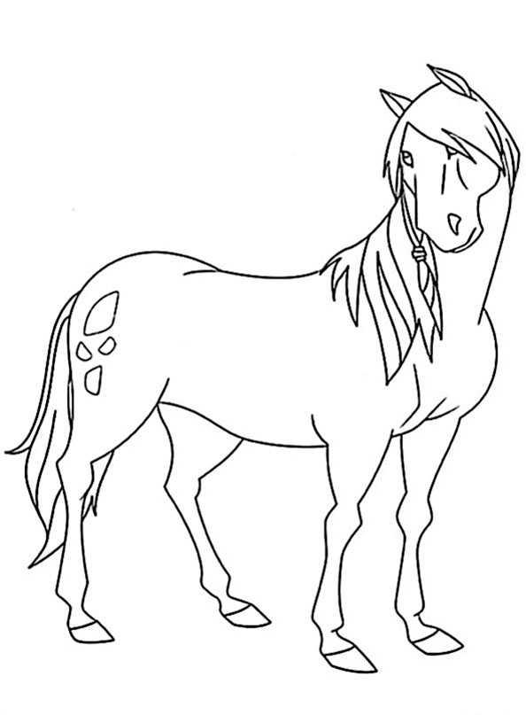 pferd von Lenas Ranch