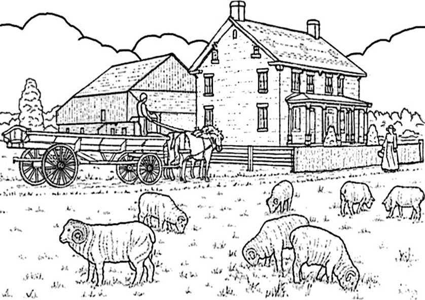 Ausmalbilder Bauernhof (10)