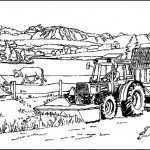 Bauernhof (7)