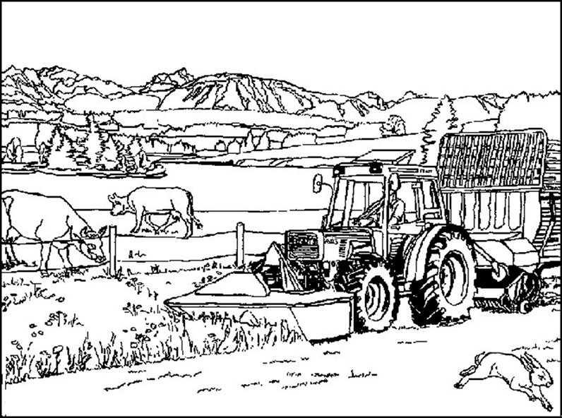Bauernhof 7  Ausmalbilder Kostenlos
