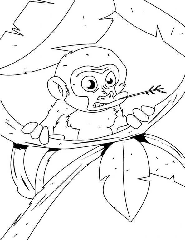 ausmalbild Affe 1