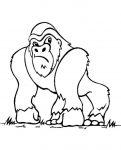 ausmalbilder Affe (Bild 3)