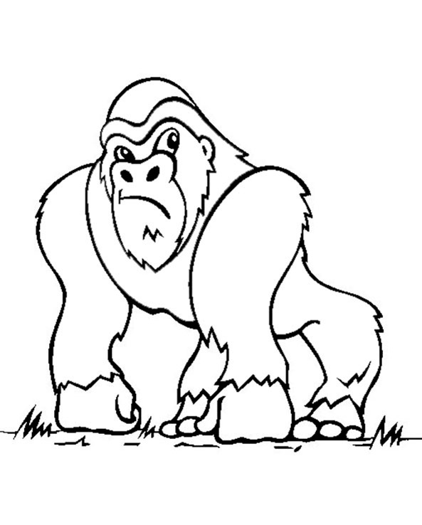 ausmalbilder Affe (Bild 3) Gorilla