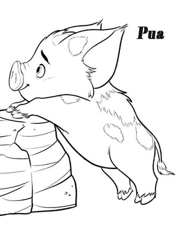 Pua von Vaiana ausmalbilder
