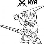 Ninjago 27