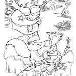 Robin Hood 21