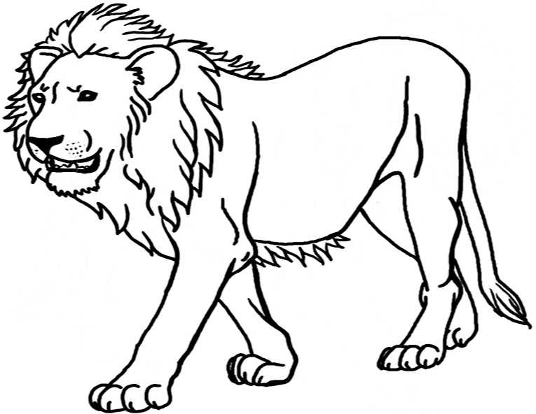Ausmalbilder Löwe 16
