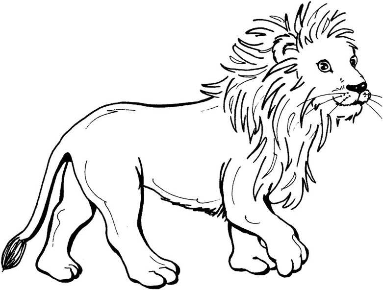 Ausmalbilder Löwe 18