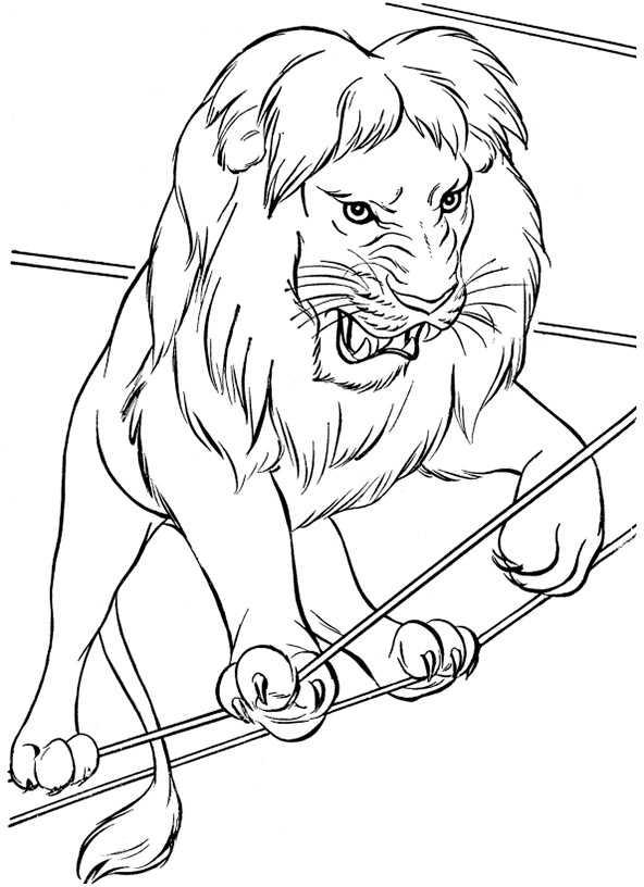 Ausmalbilder Löwe 19