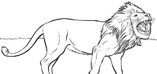 Ausmalbilder Löwe 22